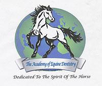 opleiding paardentandarts